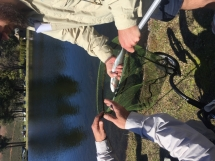 Fly Fishing Social Comp (26)